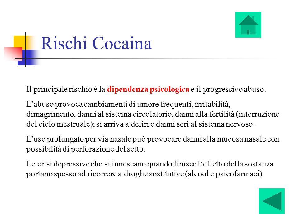 Rischi Cocaina Il principale rischio è la dipendenza psicologica e il progressivo abuso. L'abuso provoca cambiamenti di umore frequenti, irritabilità,
