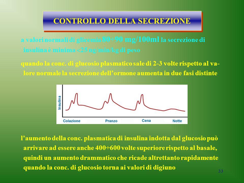 33 CONTROLLO DELLA SECREZIONE a valori normali di glicemia 80÷90 mg/100ml la secrezione di insulina è minima  25 ng/min/kg di peso quando la conc. di