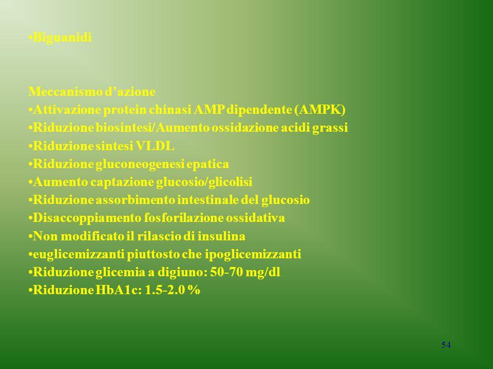 54 Biguanidi Meccanismo d'azione Attivazione protein chinasi AMP dipendente (AMPK) Riduzione biosintesi/Aumento ossidazione acidi grassi Riduzione sin