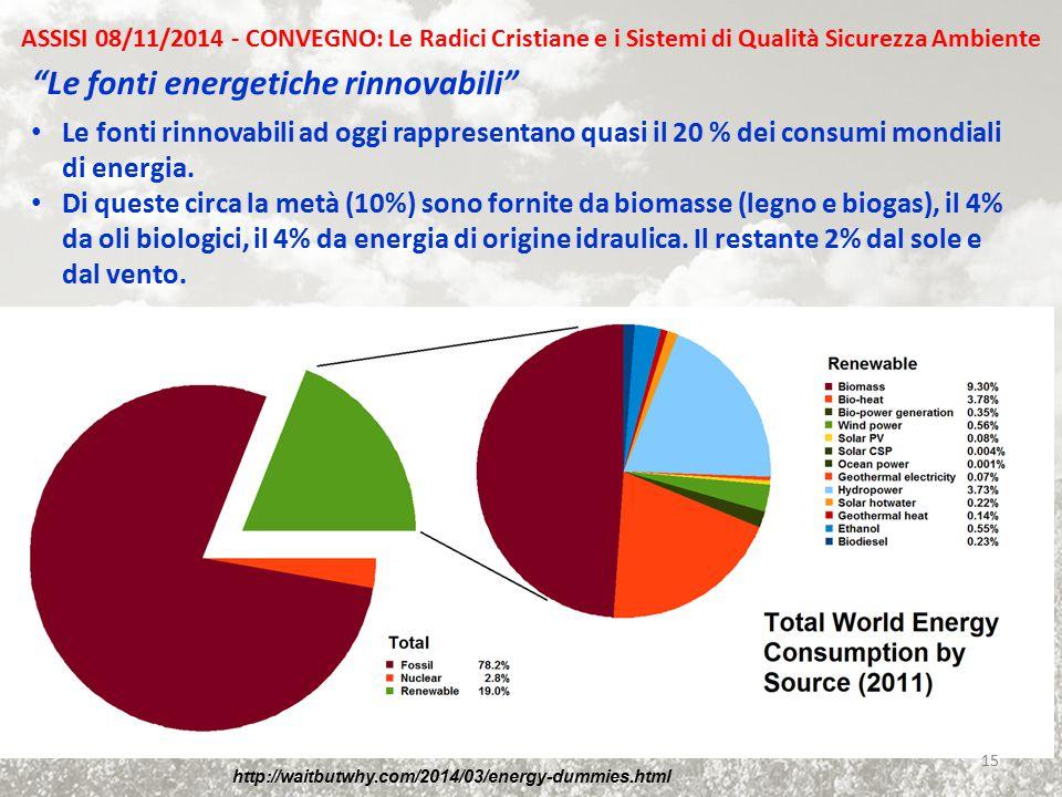 """""""Le fonti energetiche rinnovabili"""" Le fonti rinnovabili ad oggi rappresentano quasi il 20 % dei consumi mondiali di energia. Di queste circa la metà ("""