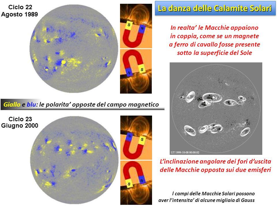 Giallo e blu: le polarita' opposte del campo magnetico L'inclinazione angolare dei fori d'uscita delle Macchie opposta sui due emisferi In realta' le