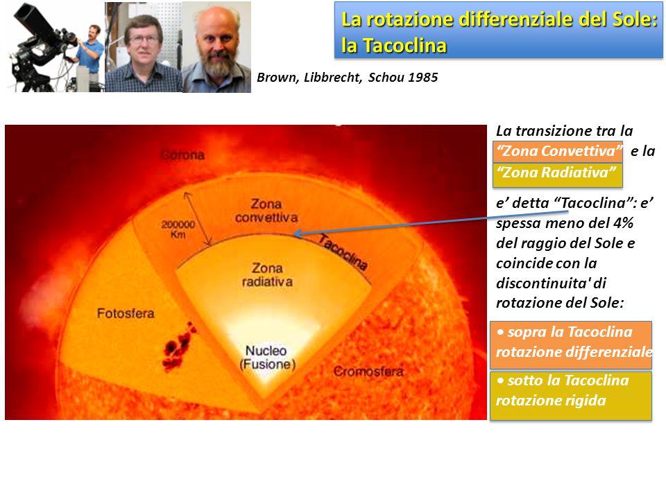 """La rotazione differenziale del Sole: la Tacoclina La transizione tra la """"Zona Convettiva"""" e la """"Zona Radiativa"""" e' detta """"Tacoclina"""": e' spessa meno d"""