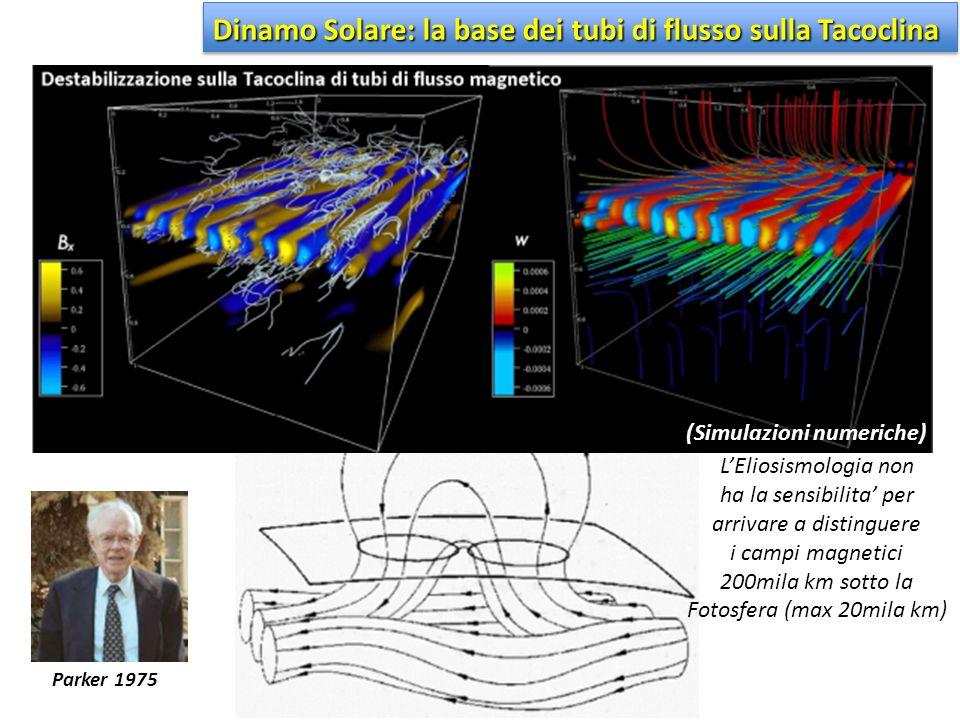 (Simulazioni numeriche) Dinamo Solare: la base dei tubi di flusso sulla Tacoclina Parker 1975 L'Eliosismologia non ha la sensibilita' per arrivare a d
