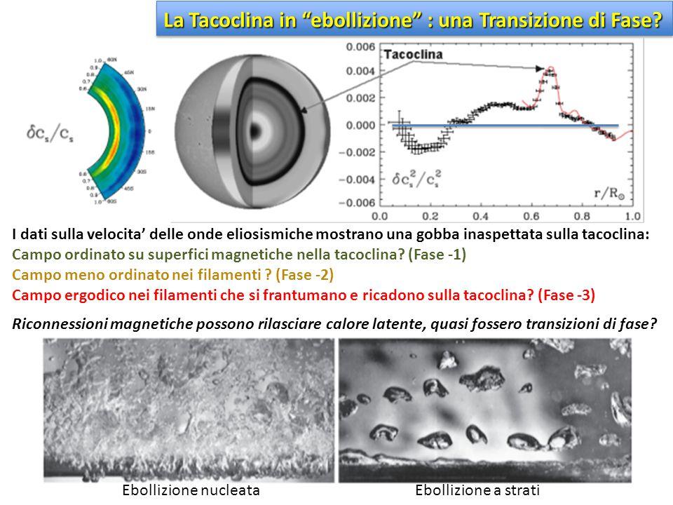 I dati sulla velocita' delle onde eliosismiche mostrano una gobba inaspettata sulla tacoclina: Campo ordinato su superfici magnetiche nella tacoclina?