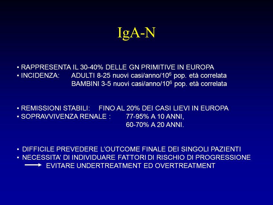 FATTORI DI RISCHIO DI PROGRESSIONE RIDOTTA FUNZIONE RENALE (Lv J Nephrology, 2008; Alamartine E, CJASN 2011) IPERTENSIONE ARTERIOSA (Lv J Nephrology, 2008) PROTEINURIA > 1 g/die alla presentazione (Coppo R, JN 2005) PROTEINURIA PERSISTENTE > 0,5 g/die (Coppo R, JN 2005) IPERCELLULARITA' MESANGIALE (score) GLOMERULOSCLEROSI SEGMENTARIA IPERCELLULARITA' ENDOCAPILLARE ATROFIA TUBULARE/FIBROSI INTERSTIZIALE PROLIFERAZIONE EXTRACAPILLARE .