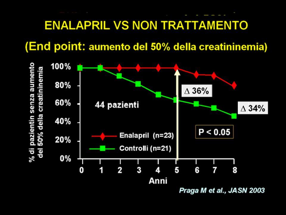 Coppo R et al JASN 2007; 18:1880-1888 bambini ed adulti < 35 anni proteinuria >1 e < 3.5 g/1.73 m2/die (stabile in 3 mesi di run-in phase), CrCl >50 ml/min/1.73m2 ACE-I (Benazepril 0.2 mg/Kg/die): 32 pz PLACEBO: 34 pz Effetto sul rischio di progressione del danno renale perdita del 30% di CrCl e/o peggioramento di proteinuria a range nefrosico Effetto sulla induzione di remissione della proteinuria remissione parziale : < 0.5 g/1.73m2/die remissione completa : <0.16 g/1.73m2/die