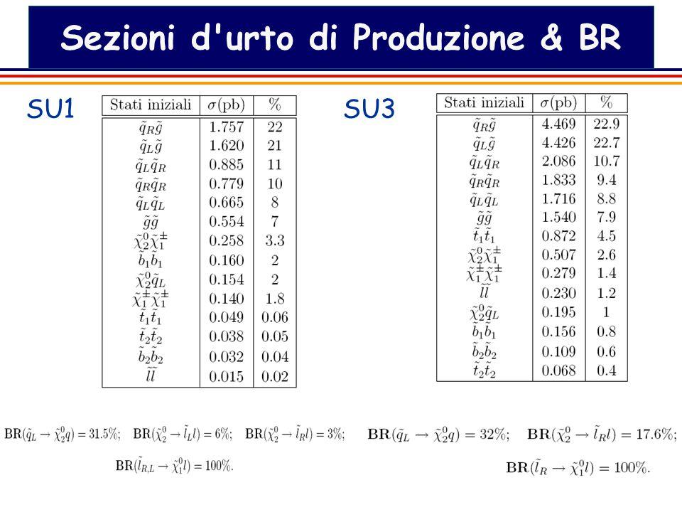 21 Sezioni d urto di Produzione & BR SU1SU3