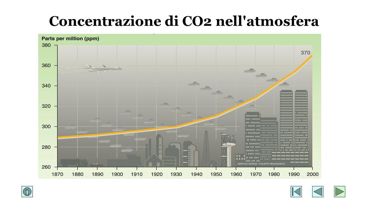 Concentrazione di CO2 nell'atmosfera