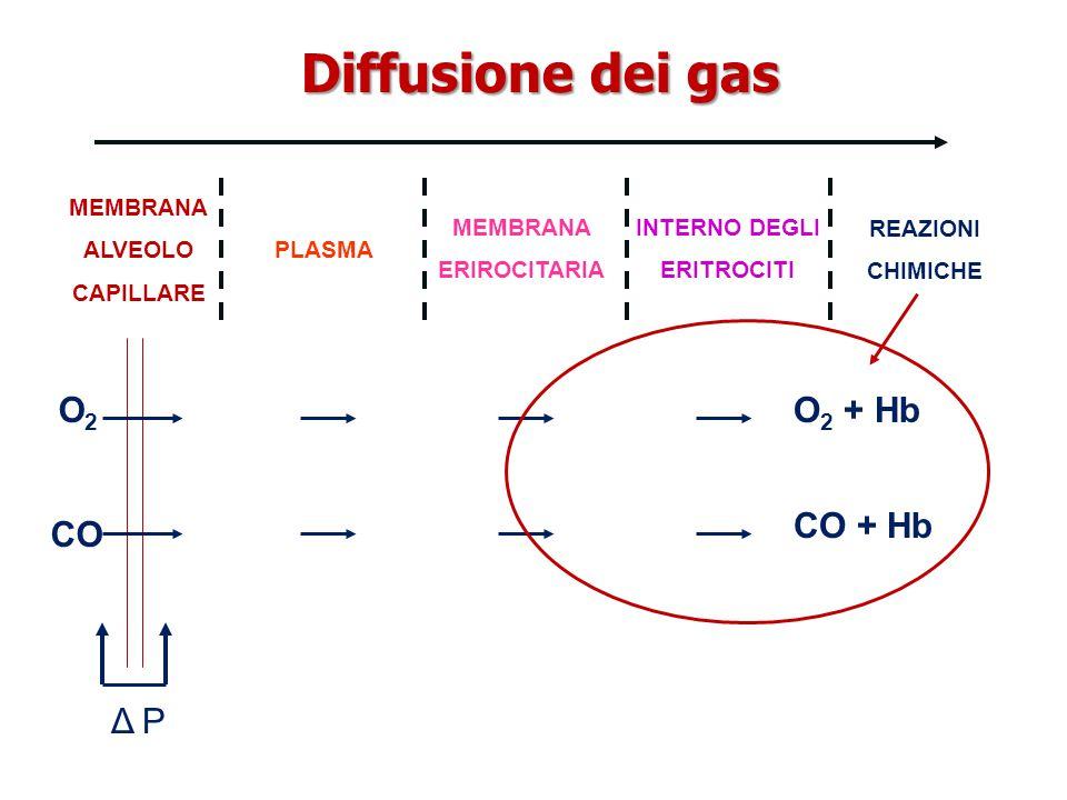 Diffusione dei gas O2O2 CO Δ P MEMBRANA ALVEOLO CAPILLARE PLASMA MEMBRANA ERIROCITARIA INTERNO DEGLI ERITROCITI REAZIONI CHIMICHE O 2 + Hb CO + Hb