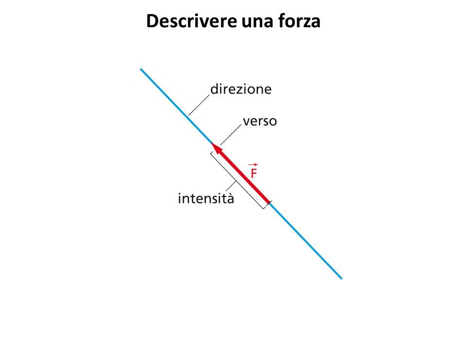 La somma delle forze (1)