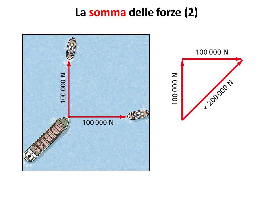 Il newton Nel Sistema Internazionale l'unità di misura della forza è il newton (N).