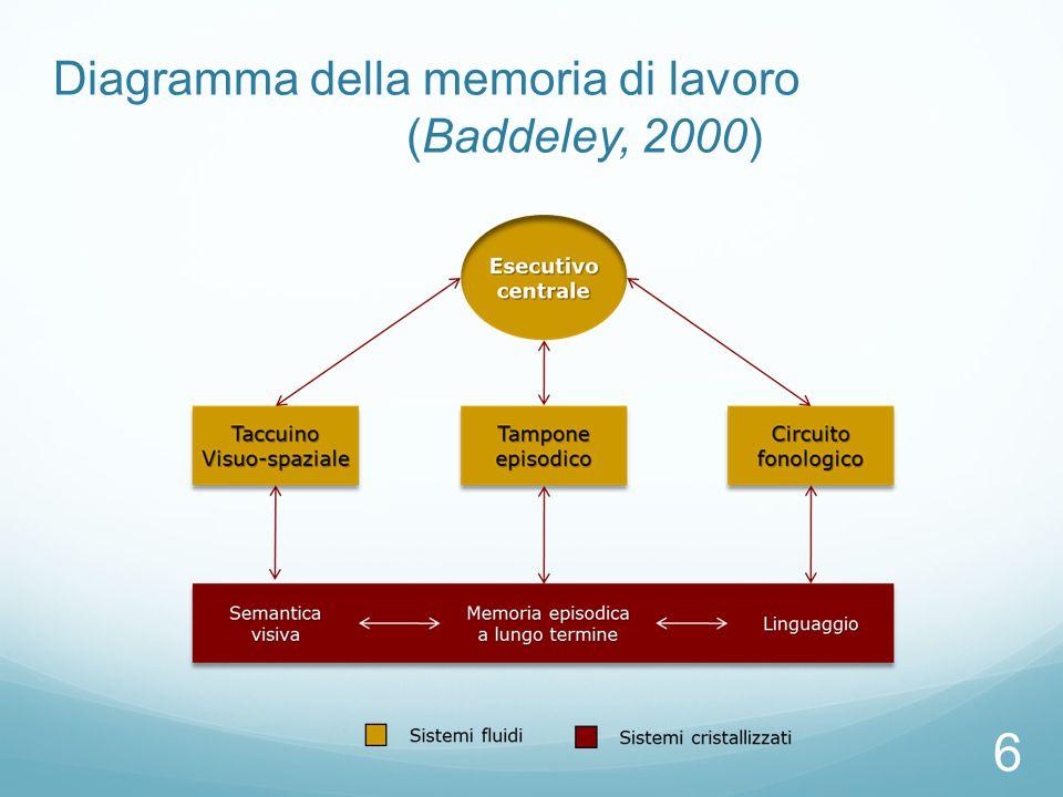 Evidenze anatomo-funzionali del modello di Baddeley Braver, 1997: Durante un compito di memoria di lavoro, aumenta l'attività neurale in due zone del cervello: 1.Corteccia Prefrontale Dorsolaterale (BA 46)  Esecutivo centrale.