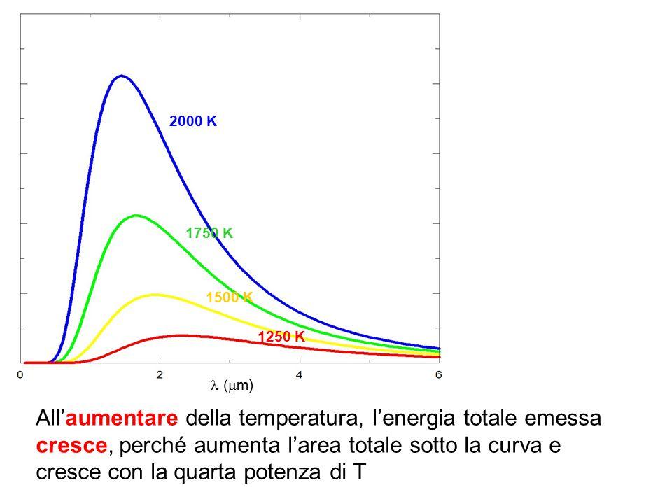 (  m) 2000 K 1750 K 1500 K 1250 K All'aumentare della temperatura, l'energia totale emessa cresce, perché aumenta l'area totale sotto la curva e cres