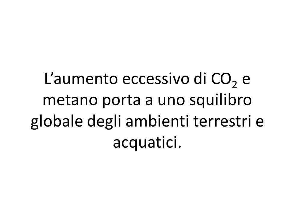 L'aumento eccessivo di CO 2 e metano porta a uno squilibro globale degli ambienti terrestri e acquatici.