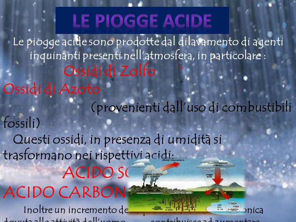 Le piogge acide sono prodotte dal dilavamento di agenti inquinanti presenti nell'atmosfera, in particolare : Ossidi di Zolfo Ossidi di Azoto (provenie