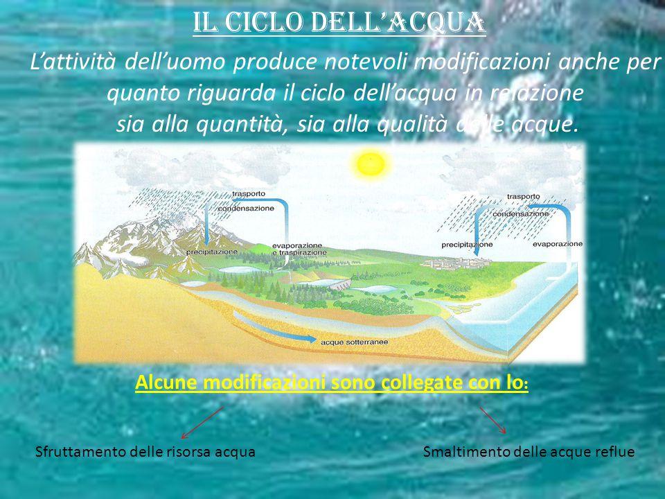Il ciclo dell'acqua L'attività dell'uomo produce notevoli modificazioni anche per quanto riguarda il ciclo dell'acqua in relazione sia alla quantità,