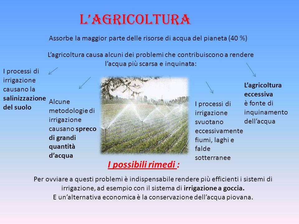 L'agricoltura Assorbe la maggior parte delle risorse di acqua del pianeta (40 %) L'agricoltura causa alcuni dei problemi che contribuiscono a rendere