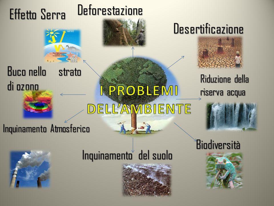 Deforestazione Effetto Serra Buco nello strato di ozono Inquinamento Atmosferico Inquinamento del suolo Biodiversità Riduzione della riserva acqua Des