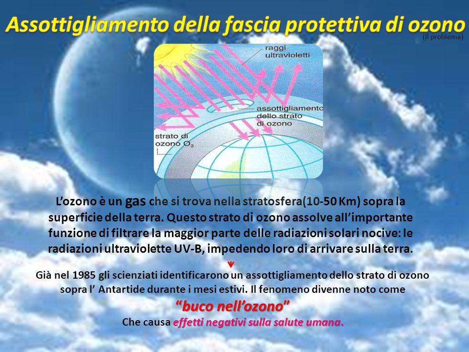 (Il problema) L'ozono è un gas che si trova nella stratosfera(10-50 Km) sopra la superficie della terra. Questo strato di ozono assolve all'importante