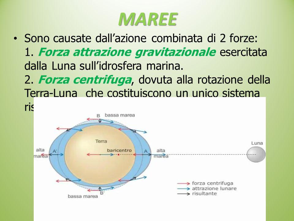 MAREE Sono causate dall'azione combinata di 2 forze: 1. Forza attrazione gravitazionale esercitata dalla Luna sull'idrosfera marina. 2. Forza centrifu
