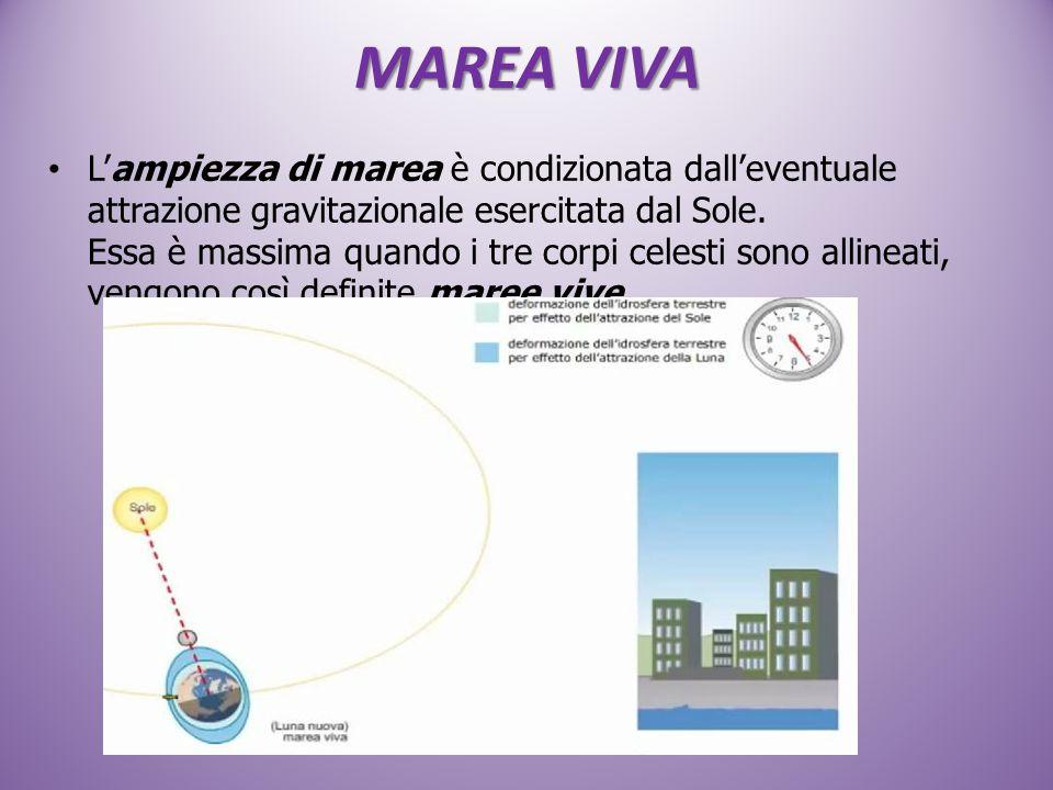 MAREA VIVA L'ampiezza di marea è condizionata dall'eventuale attrazione gravitazionale esercitata dal Sole. Essa è massima quando i tre corpi celesti