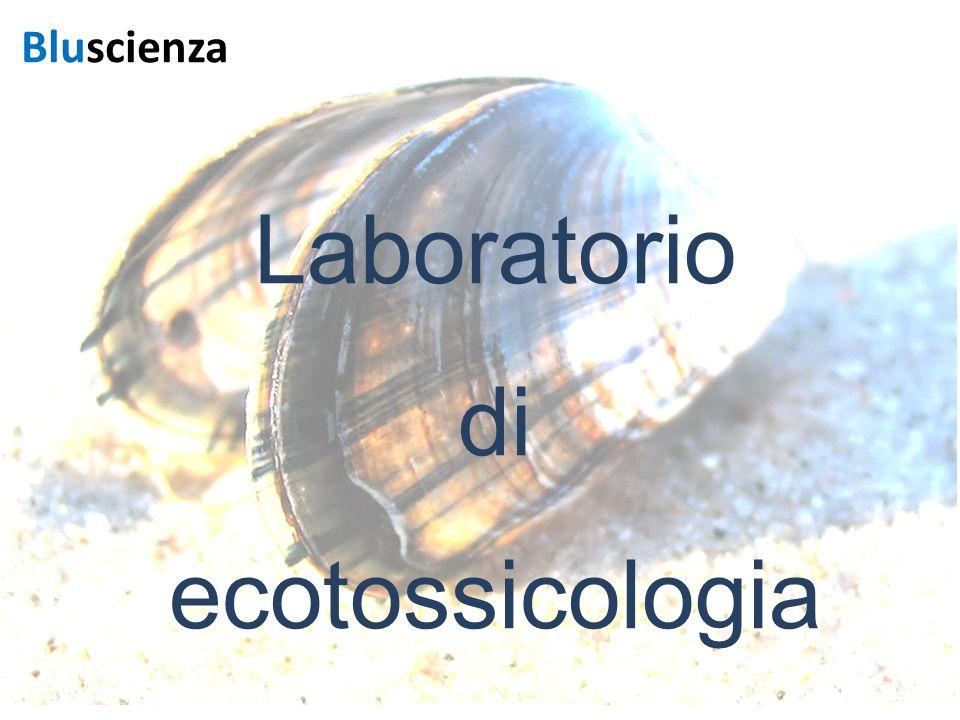 Laboratorio di ecotossicologia Bluscienza