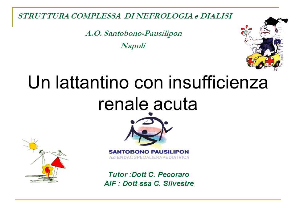 STRUTTURA COMPLESSA DI NEFROLOGIA e DIALISI A.O. Santobono-Pausilipon Napoli Un lattantino con insufficienza renale acuta Tutor :Dott C. Pecoraro AIF