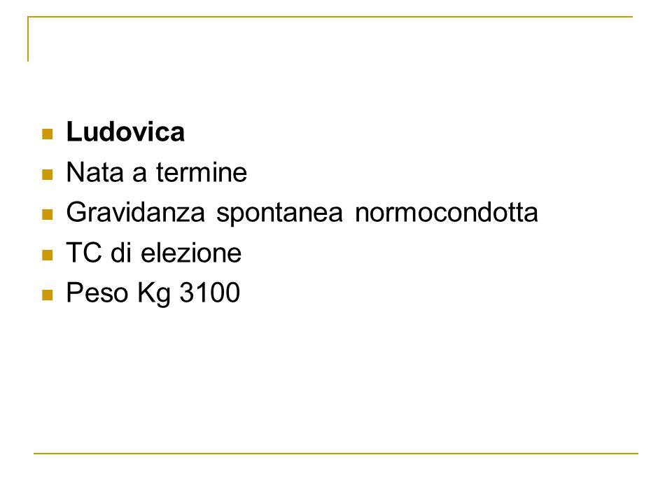buy cheap levitra online canada