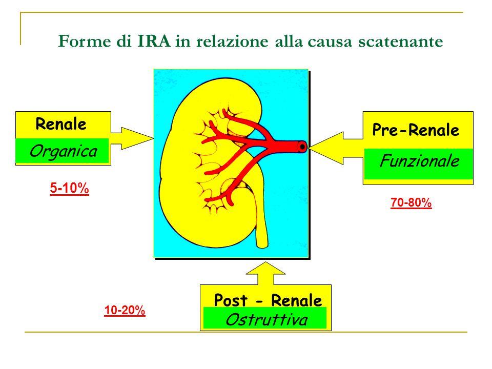 Forme di IRA in relazione alla causa scatenante Pre-Renale Funzionale Renale Organica Post - Renale Ostruttiva 5-10% 70-80% 10-20%