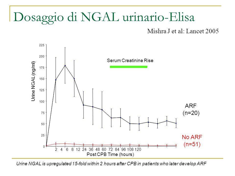 Dosaggio di NGAL urinario-Elisa 151413121110987654321 0 25 50 75 100 125 150 175 200 225 Urine NGAL (ng/ml) Serum Creatinine Rise ARF (n=20) No ARF (n=51) 2 4 6 8 12 24 36 48 60 72 84 96 108 120 Post CPB Time (hours) Urine NGAL is upregulated 15-fold within 2 hours after CPB in patients who later develop ARF Mishra J et al: Lancet 2005