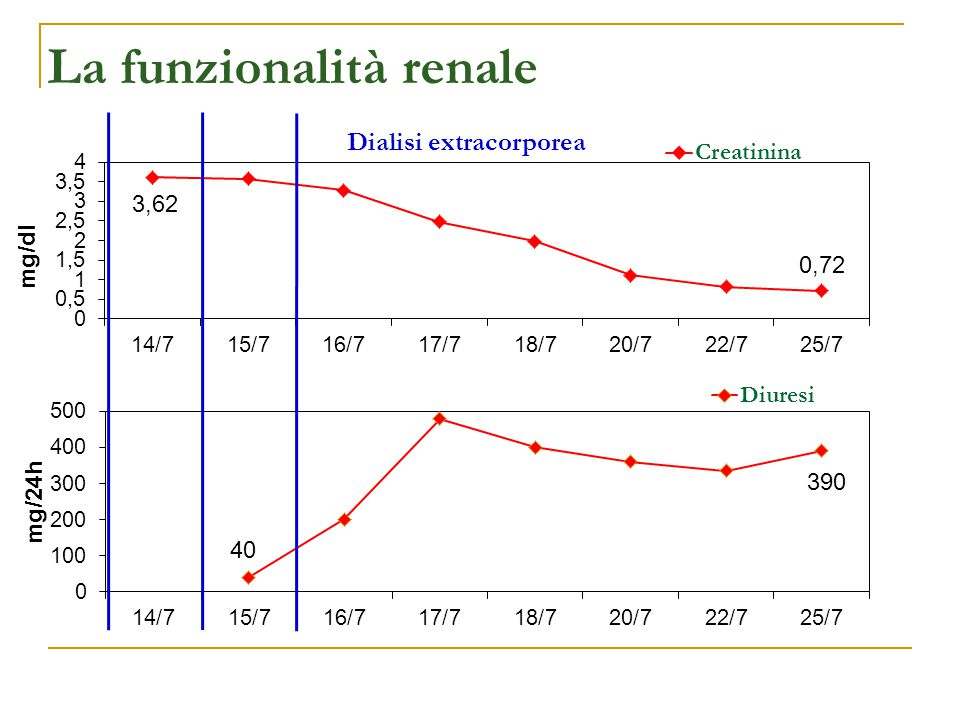 Dialisi extracorporea mg/dl La funzionalità renale