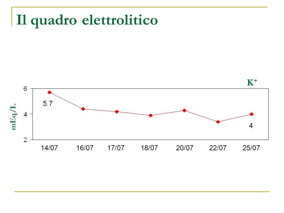 Il quadro elettrolitico 14/0716/0717/0718/0720/0722/0725/07 mEq/L 5.7 4 K+K+