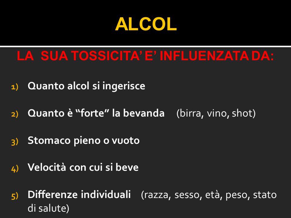 """ALCOL LA SUA TOSSICITA' E' INFLUENZATA DA: 1) Quanto alcol si ingerisce 2) Quanto è """"forte"""" la bevanda (birra, vino, shot) 3) Stomaco pieno o vuoto 4)"""