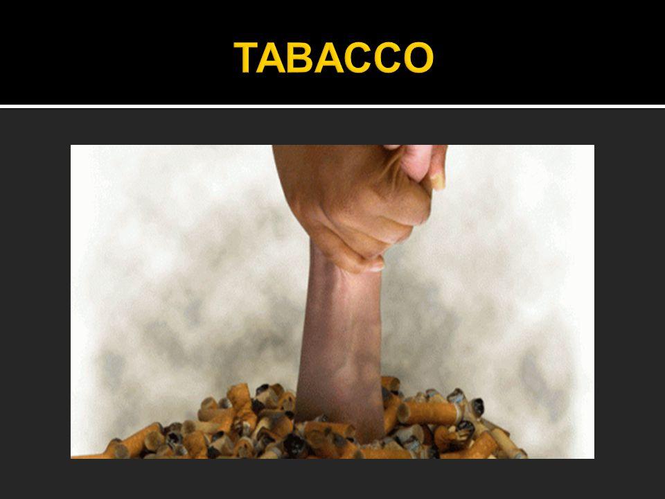 TABACCO Il tabacco è un prodotto agricolo, ottenuto dalle foglie delle piante del genere nicotiana, di cui esistono molte specie