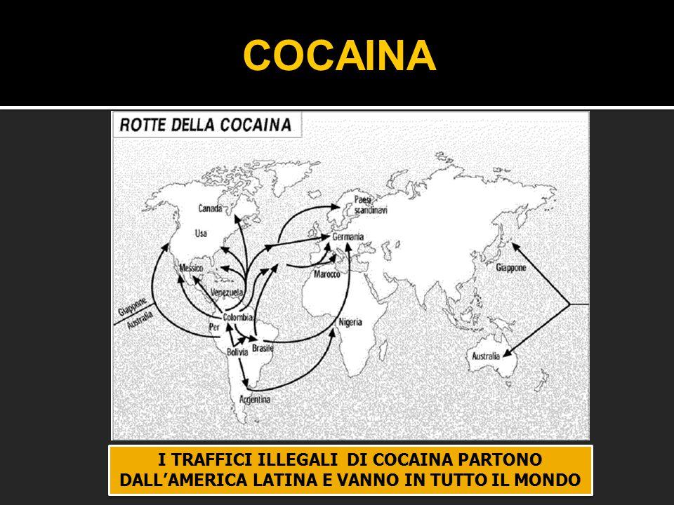 I TRAFFICI ILLEGALI DI COCAINA PARTONO DALL'AMERICA LATINA E VANNO IN TUTTO IL MONDO COCAINA