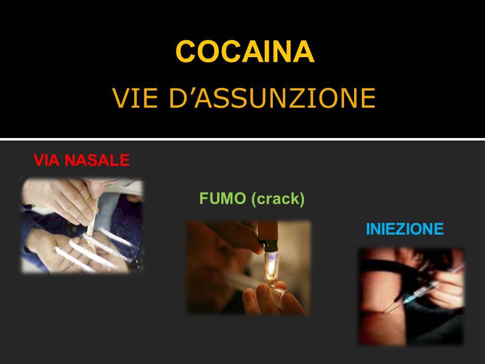 VIE D'ASSUNZIONE COCAINA VIA NASALE FUMO (crack) INIEZIONE