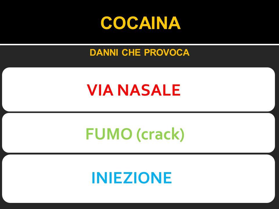 Sniffare cocaina crea rischi legati al danneggiamento dei tessuti interni e dei capillari del naso. Questo, oltre a comportare una sensibile diminuzio