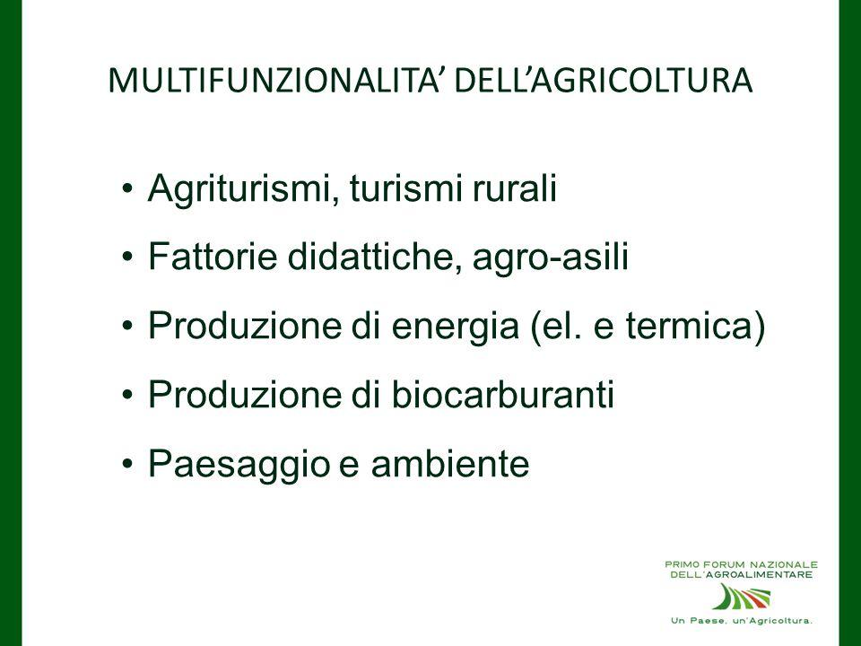 MULTIFUNZIONALITA' DELL'AGRICOLTURA Agriturismi, turismi rurali Fattorie didattiche, agro-asili Produzione di energia (el.