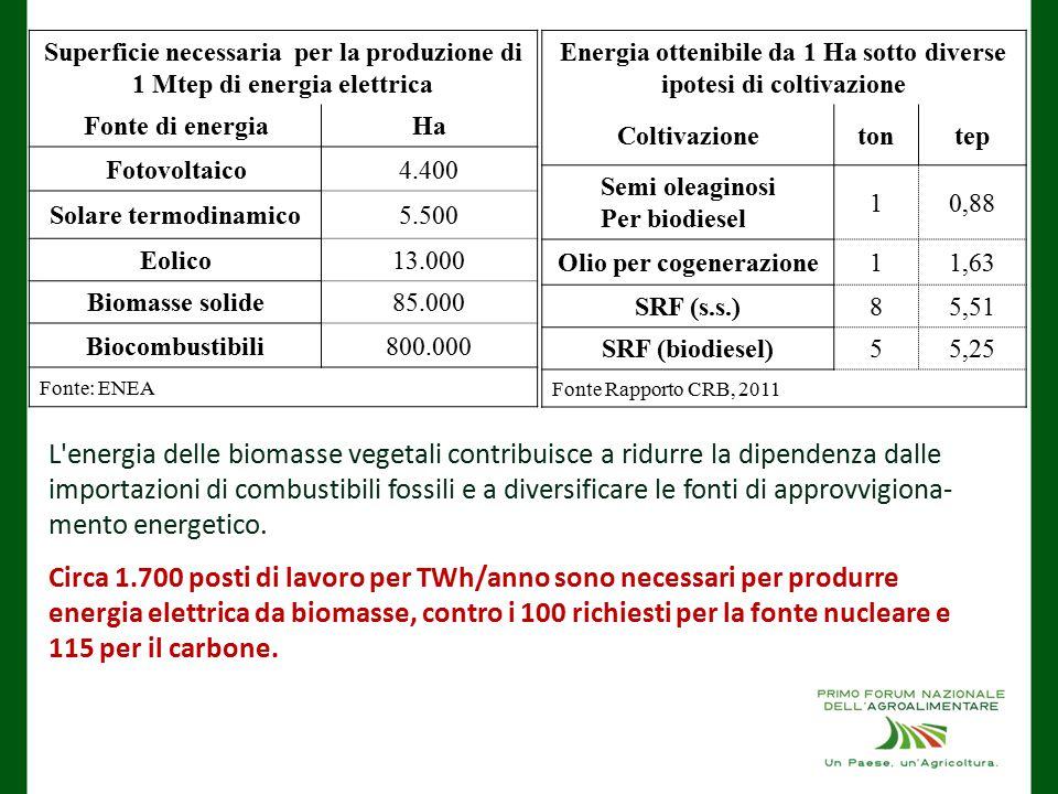Superficie necessaria per la produzione di 1 Mtep di energia elettrica Fonte di energiaHa Fotovoltaico4.400 Solare termodinamico5.500 Eolico13.000 Biomasse solide85.000 Biocombustibili800.000 Fonte: ENEA Energia ottenibile da 1 Ha sotto diverse ipotesi di coltivazione Coltivazionetontep Semi oleaginosi Per biodiesel 10,88 Olio per cogenerazione11,63 SRF (s.s.)85,51 SRF (biodiesel)55,25 Fonte Rapporto CRB, 2011 L energia delle biomasse vegetali contribuisce a ridurre la dipendenza dalle importazioni di combustibili fossili e a diversificare le fonti di approvvigiona- mento energetico.