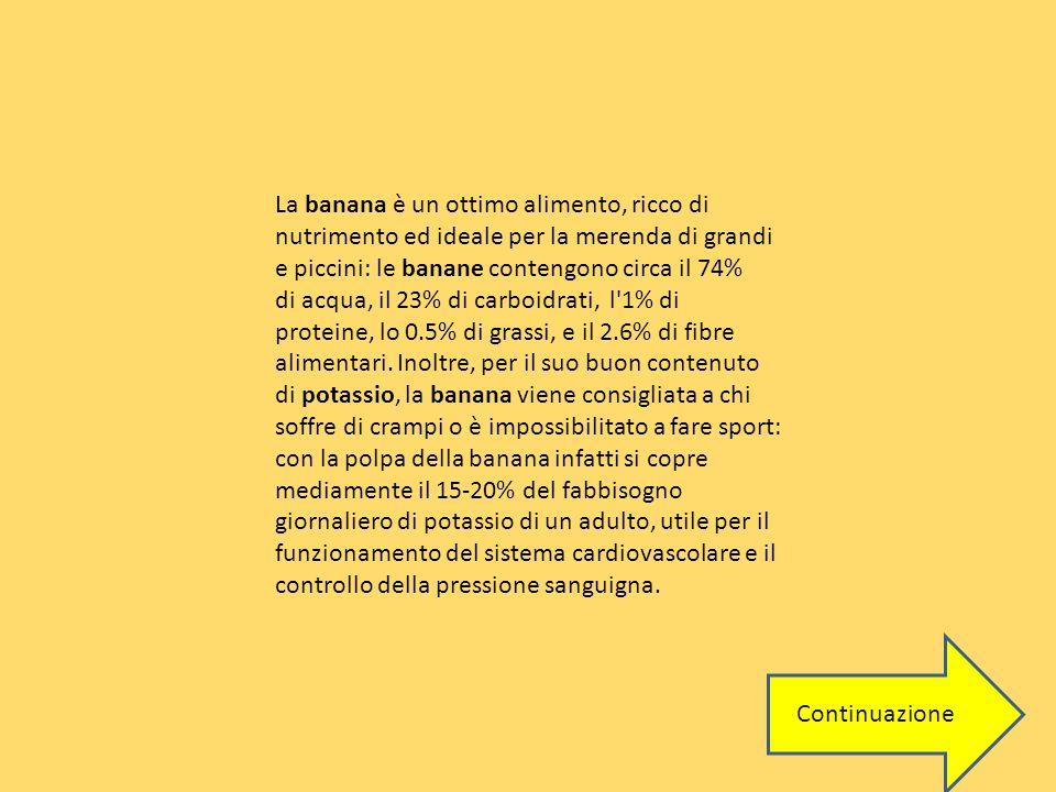 La banana è un ottimo alimento, ricco di nutrimento ed ideale per la merenda di grandi e piccini: le banane contengono circa il 74% di acqua, il 23% di carboidrati, l 1% di proteine, lo 0.5% di grassi, e il 2.6% di fibre alimentari.