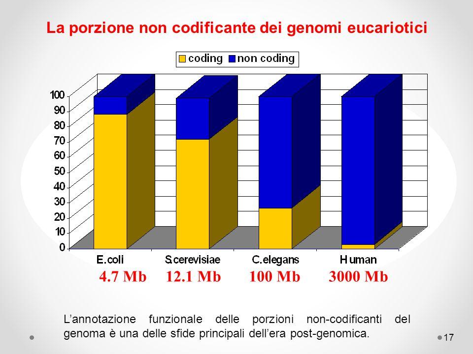 17 La porzione non codificante dei genomi eucariotici 4.7 Mb12.1 Mb100 Mb3000 Mb L'annotazione funzionale delle porzioni non-codificanti del genoma è una delle sfide principali dell'era post-genomica.