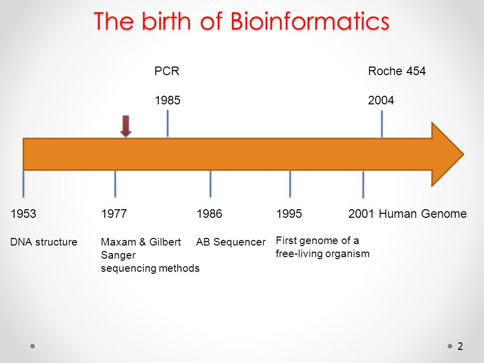 2 The birth of Bioinformatics 1953 DNA structure 1977 Maxam & Gilbert Sanger sequencing methods PCR 1985 1986 AB Sequencer 1995 First genome of a free-living organism Roche 454 2004 2001 Human Genome