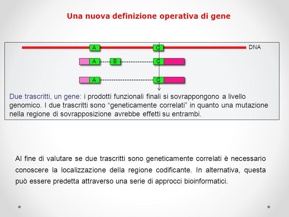 """DNA A A B B C C A A C C A A C C Due trascritti, un gene: i prodotti funzionali finali si sovrappongono a livello genomico. I due trascritti sono """"gene"""