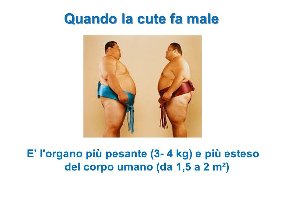 E' l'organo più pesante (3- 4 kg) e più esteso del corpo umano (da 1,5 a 2 m²) Quando la cute fa male