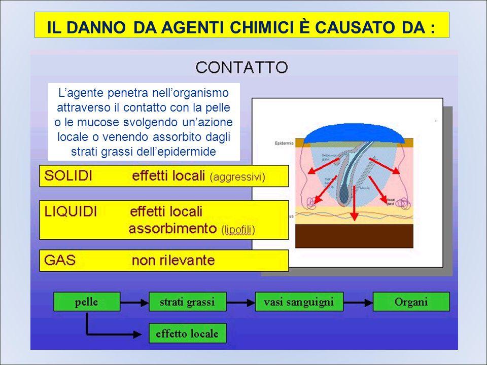 IL DANNO DA AGENTI CHIMICI È CAUSATO DA : L'agente penetra nell'organismo attraverso il contatto con la pelle o le mucose svolgendo un'azione locale o venendo assorbito dagli strati grassi dell'epidermide