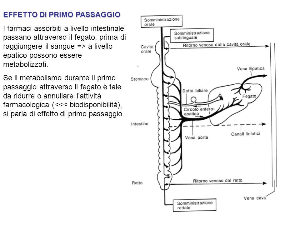 EFFETTO DI PRIMO PASSAGGIO I farmaci assorbiti a livello intestinale passano attraverso il fegato, prima di raggiungere il sangue => a livello epatico