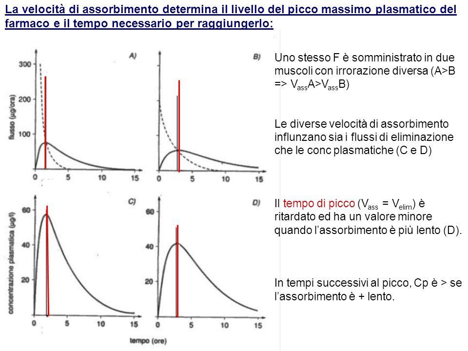 La velocità di assorbimento determina il livello del picco massimo plasmatico del farmaco e il tempo necessario per raggiungerlo: Uno stesso F è sommi