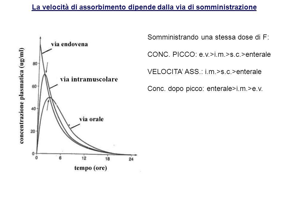 La velocità di assorbimento dipende dalla via di somministrazione via intramuscolare Somministrando una stessa dose di F: CONC. PICCO: e.v.>i.m.>s.c.>