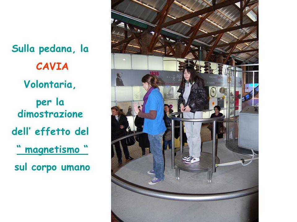 Sulla pedana, la CAVIA Volontaria, per la dimostrazione dell' effetto del magnetismo sul corpo umano