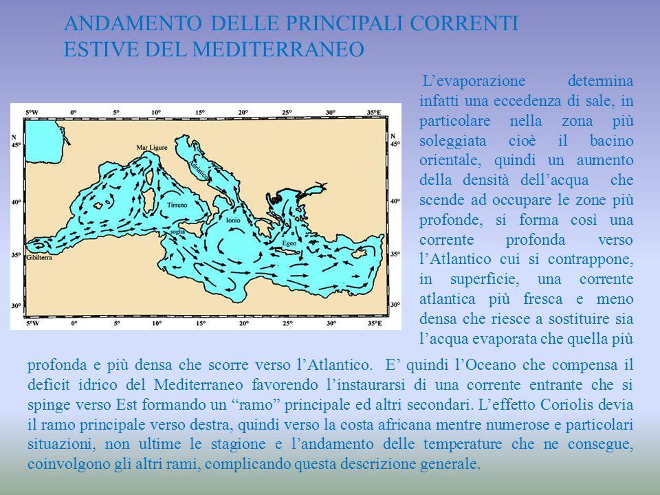 ANDAMENTO DELLE PRINCIPALI CORRENTI ESTIVE DEL MEDITERRANEO L'evaporazione determina infatti una eccedenza di sale, in particolare nella zona più sole